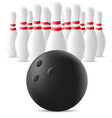 bowling ball and skittles vector image