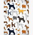cute greeting card with cartoon dogs different vector image