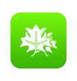 maple icon green vector image