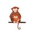 monkey with baby sitting on tree branch isolated vector image vector image
