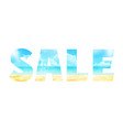 summer sale in the double exposure vector image vector image