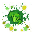 broccoli vegetable logo watercolor splash design vector image