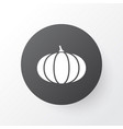 pumpkin icon symbol premium quality isolated vector image vector image