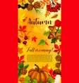 autumn banner with pumpkin and fallen leaves vector image vector image