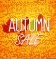 Autumn sale concept Color of autumn leaves vector image vector image