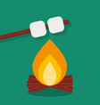 bonfire with marshmallow camping grill outdoor vector image