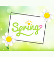 bright greeting card with text-spring manual vector image