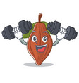 fitness cacao bean character cartoon vector image vector image