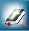 holy bible on the background of light rays vector image vector image