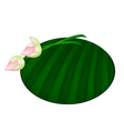 Pink Lotus Flower on Green Banana Leaf vector image