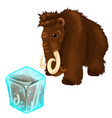 shaggy mammoth and it copy frozen in ice cube vector image