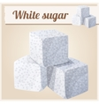 White sugar Detailed Icon vector image
