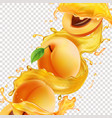 apricot fruit in realistic juice splash vector image vector image