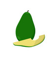 avocado alligator pear fruit vector image