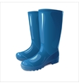 blue rain boots vector image