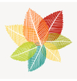 Colorful abstract transparent leaves autumn vector image vector image