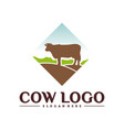 cow logo design concepts cow farm logo template vector image