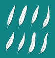 group feather white vector image vector image