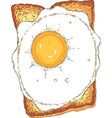 sandwich toasted sliced bread with fried egg vector image