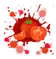 tomato vegetable logo watercolor splash design vector image vector image