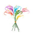 Anthurium Bouquet or Flamingo Bouquet on White vector image vector image
