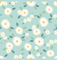 cute white daisy flower seamless pattern on blue vector image vector image