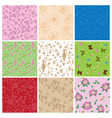 plants and butterflies on seamless patterns - set vector image vector image