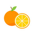summer fruit collection fruits orange vegetarian vector image