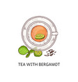 tea with bergamot in glass cup - top view drawing vector image vector image