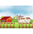 A farm with a cow vector | Price: 1 Credit (USD $1)