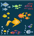 aquarium ocean fish underwater bowl tropical vector image vector image