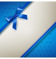 background with bow blue vector image