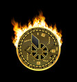 crypto currency bitshares golden symbol on fire vector image vector image