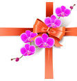 decorative bow with orchids vector image