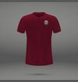football kit of qatar vector image