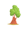 Green oak tree with face forest or park plant