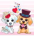 lovers cute labrador retriever dogs vector image vector image