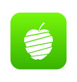 sliced apple icon digital green vector image vector image