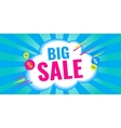 Big sale and discounts banner vector image