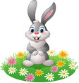 cartoon rabbit on the grass vector image