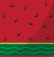close up watermelon background vector image