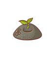 flat sprouting seedling sapling icon vector image vector image