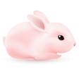 pink rabbit vector image vector image