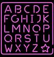 glowing pink neon typeface vector image