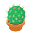 cactus in flower pot icon cartoon style vector image vector image
