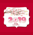 chinese new year 2019 background design year of vector image vector image