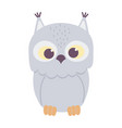 cute owl bird animal cartoon isolated design icon vector image vector image