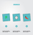 flat icons lettuce hot pepper pitaya and other vector image vector image