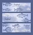 seafood flyers vintage mediterranean fish food vector image