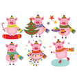 set of isolated christmas cheerful pigs vector image vector image